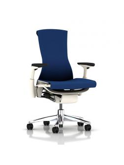Herman Miller Embody full options